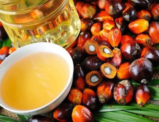 пальмовое масло, купить