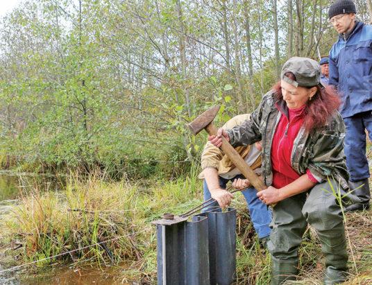 Спасение болота в Ельне