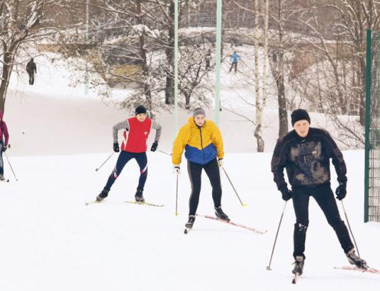 спорт, лыжи